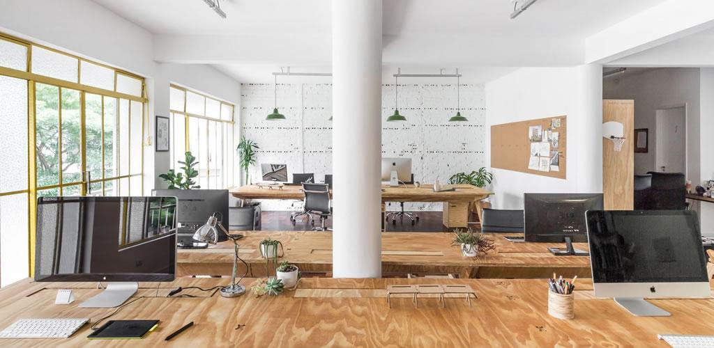 Contrachapado y plantas en el estudio de Solo Arquitetos en Brasil