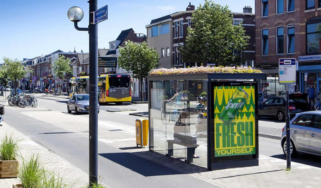 Utrecht crea 300 paradas de autobuses con techos verdes para abejas