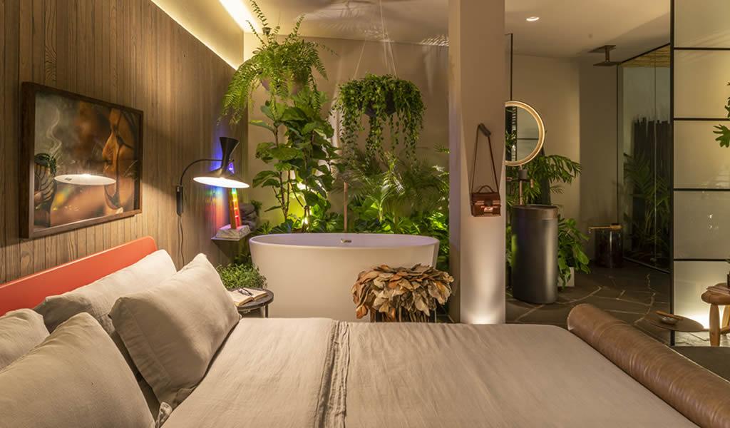Plantas resistentes que sobreviven en espacios con poca luz