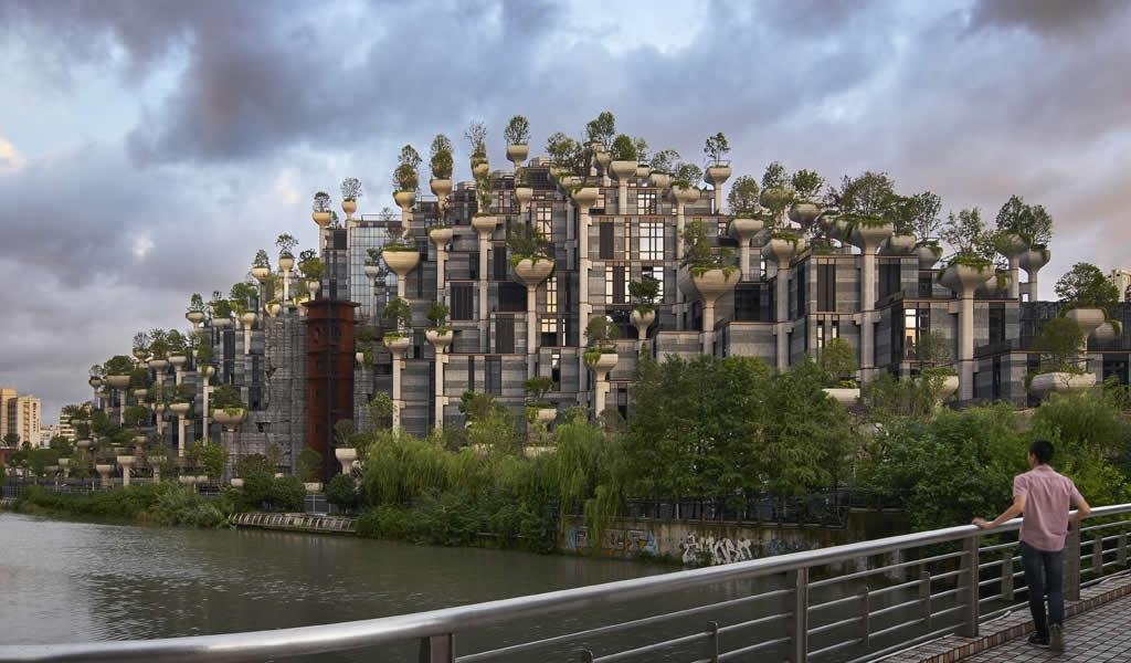 Diseño de columnas de concreto crea maceteros para 1000 árboles