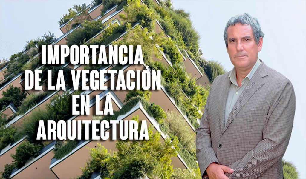 Importancia de la vegetación en la arquitectura