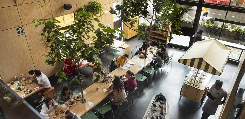 Armónica Café por Vicca Verde