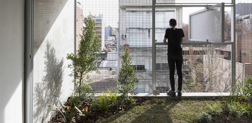 Balcones con vegetación