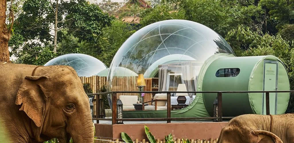 Jungle Bubbles, la experiencia de sumergirte en la jungla
