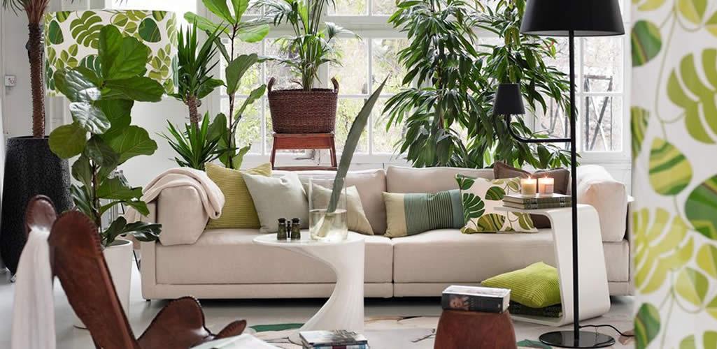 Estilo 'Urban jungle': Claves para dar más vida a tu casa