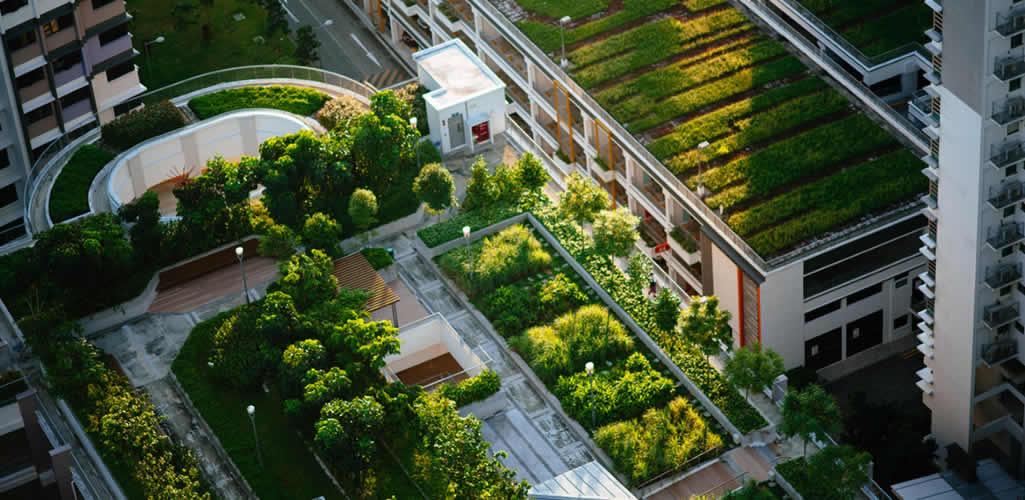La azotea verde más grande de Latinoamérica