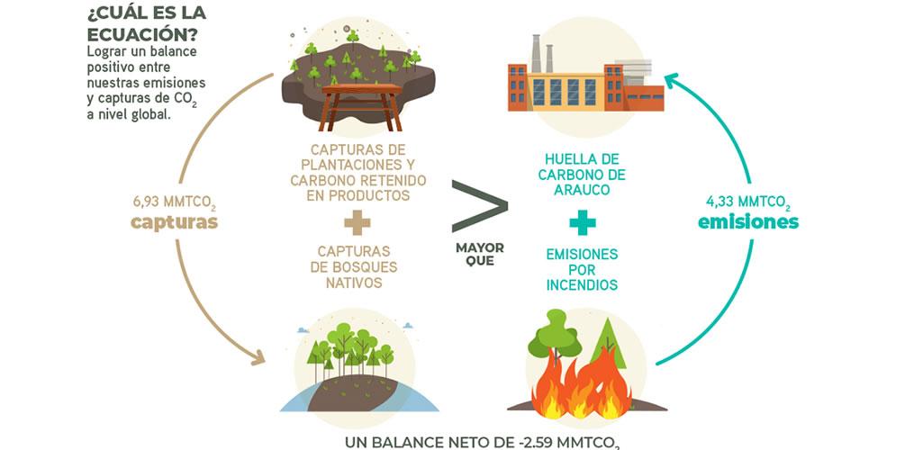Arauco, la Primera Compañía Forestal del mundo en certificar su Carbono Neutralidad