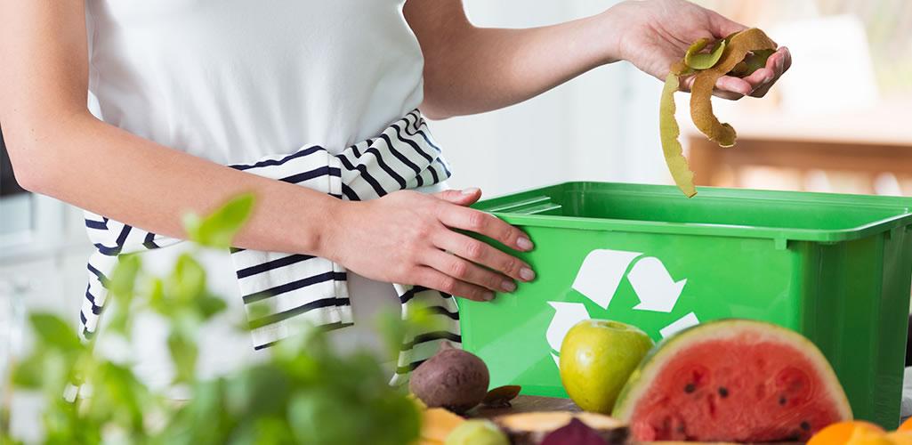 Record: Cocinas Eco-Friendly