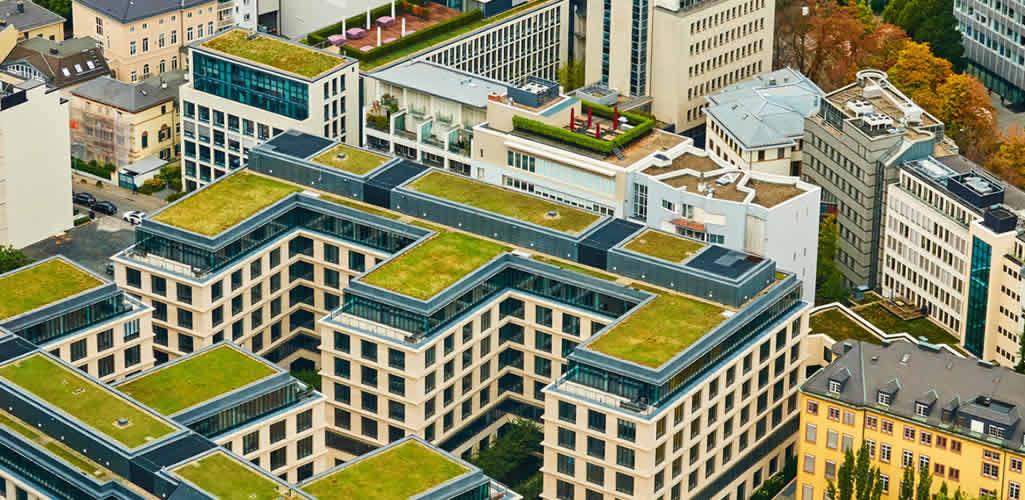 Por qué los edificios con jardines verticales están ayudando al mundo