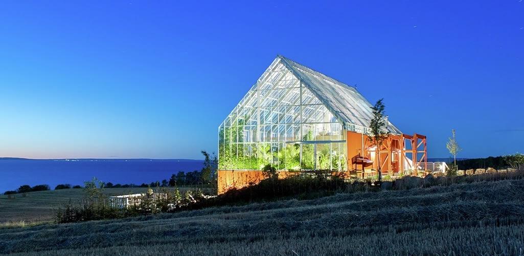 Invernaderos como espacios de convivencia entre el ser humano y la naturaleza