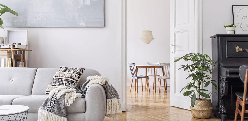 Luz cálida, luz blanca o neutra, ¿cuál debo usar en mi casa?