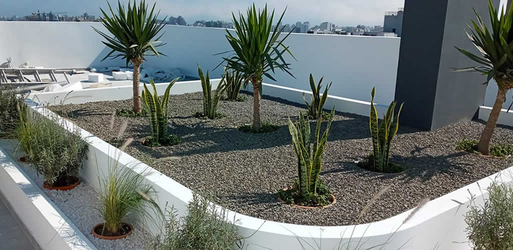 Reverdece: Techos verdes, una alternativa para implementar un jardín en tus proyectos