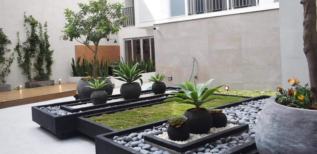 Macetas: La solución perfecta para tener espacios verdes