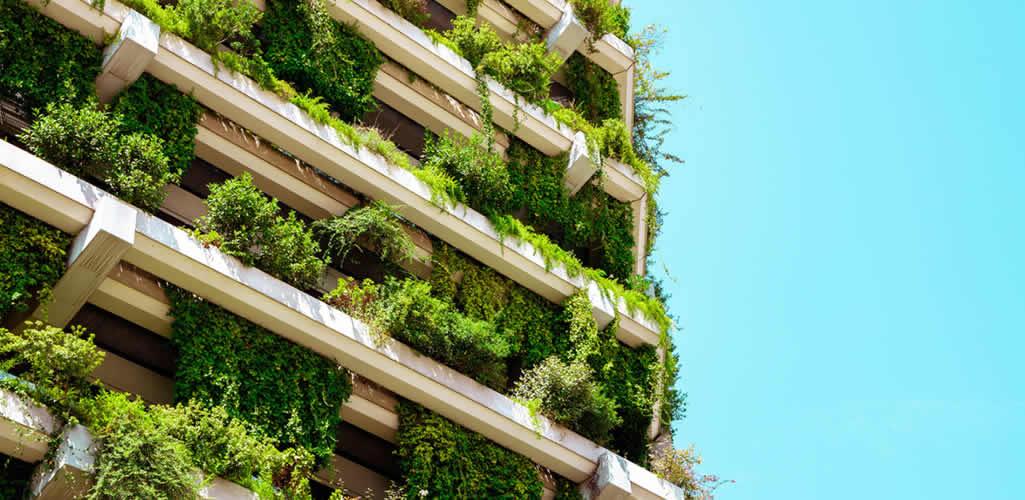 Los 6 creativos latinos que lideran el diseño sostenible