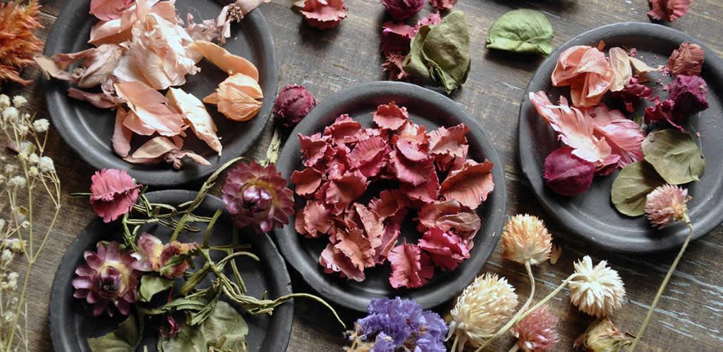 Tips para decorar tu hogar con flores secas