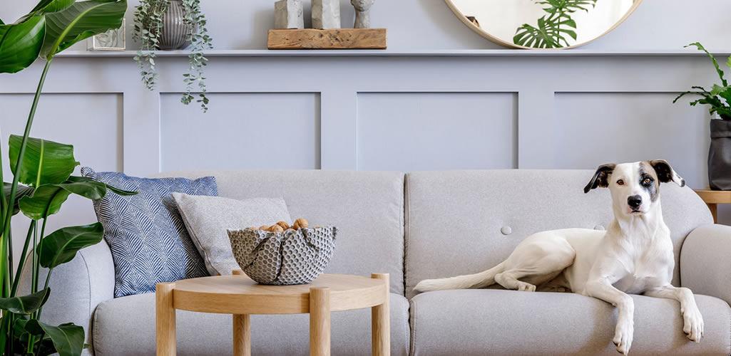Descubre cómo crear espacios impecables y con mucho estilo
