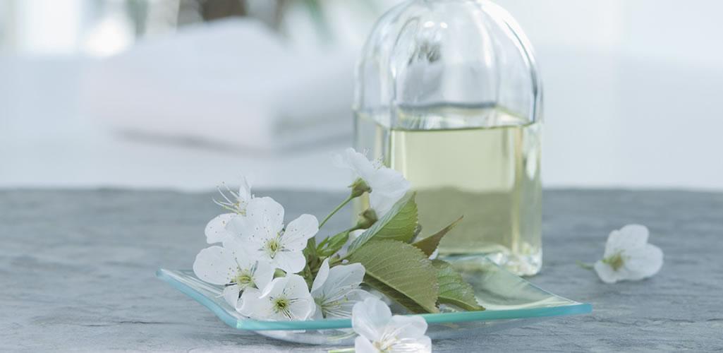10 flores blancas para decorar tu hogar